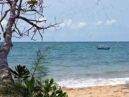 best price on gold sand beach bungalow in phu quoc island reviews