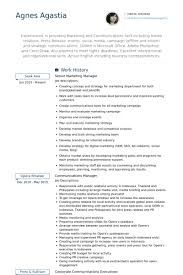 Sales Manager Resume Sample U0026 Writing Tips by Senior Executive Resume Examples