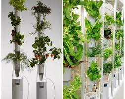 plant hanging wall planters beautiful wall planters indoor