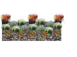 ornamental grass 3d design