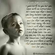 Love A Child Quotes by In The End I Hope I Did My Best As His Mother My Son