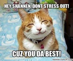 Stressed Out Memes - shannen dont stress out