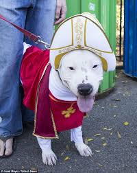 Pope Halloween Costume Dogs Dressed Walk Owners Halloween Parade