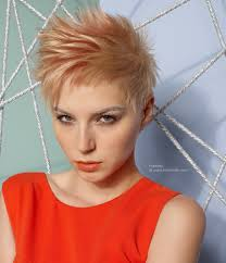 very short blonde haircut with the hair pointing in all directions