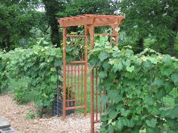 stunning garden arbor ideas simple design 20 arbor trellis amp