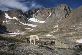 Montana mountains images Absaroka beartooth mountains represent the roof of montana part i jpg
