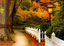 Halloween Path Lights by Crunchy Leaves U0026 Apple Trees Autumn Pinterest Autumn