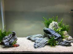 Fluval Edge Aquascape создание аквариума Fluval Edge 2 от Oliver Knott Aquascaping