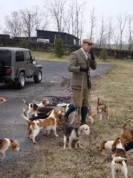 Radio Collar For Beagle February 2010 Full Cry A Hound Blog