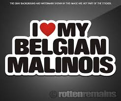 belgian malinois quotes belgian malinois i love my dog decal 5