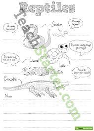 vertebrates resource collection u2013 teach starter