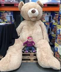 stuffed teddy bears walmart com largest teddy bear in the world google search on the hunt