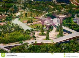 Botanical Gardens In Singapore by Super Trees In Singapore At The Botanical Gardens By The Bay