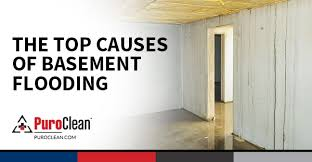 How To Dry Flooded Basement by The Top Causes Of Basement Flooding Water Damage Restoration