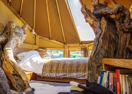 the phoenix tree treehouse quirky styling elevated bedroom