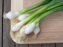 l oignon cuisine nutrition et santé
