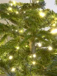 led christmas tree lights use energy efficient christmas lights hgtv