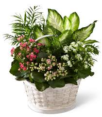 Hutchings Funeral Home Macon Ga Macon Memorial Park Funeral Home Flower Delivery By Florist One