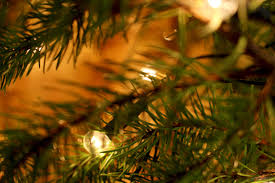 top 10 christmas tree safety rules security systems home