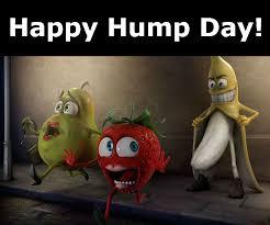 Happy Hump Day Memes - happy hump day laughshop com