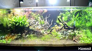 30 led aquarium light kessil a150w amazon sun led aquarium light at neptune aquatics in