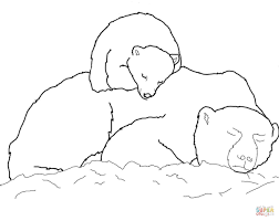 polar bears coloring pages qlyview com