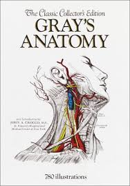 Online Human Body Anatomy Of The Human Body 20th Edition Read Online