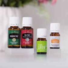essential oils for fragrance ls shop young living s essential oil products singles blends and