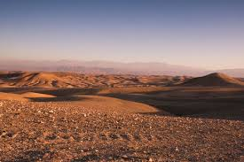 Stone Desert | stone desert c scarabeo camp