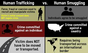 Human Trafficking Estimates by Investigation Trafficked Web Of Despair