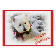 westie christmas cards u0026 invitations zazzle com au