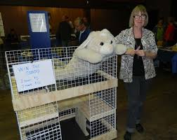 Homemade Rabbit Cage 7th Annual Vancouver Rabbit Fest A Success