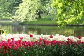 kir the nine most beautiful gardens in world kiwireport garden