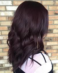 brown plum hair color best 25 violet brown hair ideas on pinterest purple brown hair
