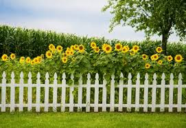 25 garden fences in varied styles and materials garden club