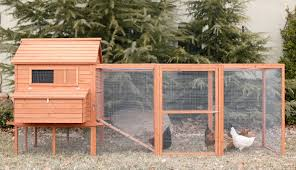 chicken coops for sale in florida 58 with chicken coops for sale