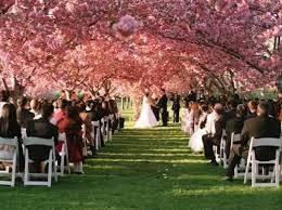 outdoor wedding venues ny affordable garden wedding venues