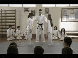 imagenes gif karate girl karate gif find share on giphy