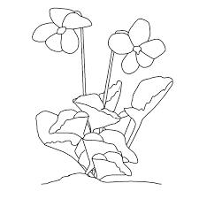 dessin de fleur a imprimer az coloriage