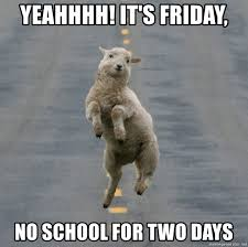 No School Meme - yeahhhh it s friday no school for two days excited sheep meme