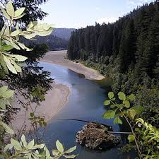 California nature activities images 104 best humboldt images humboldt county california jpg