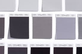 Pantone Color Pallete Graphics Gray Quietly Assuring