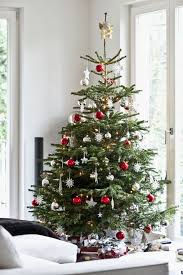 Decorated Christmas Tree Gallery by Christmas Small Christmas Tree Decorations Decoration
