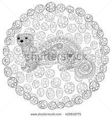 hand drawn ferret zen tangle style stock vector 429816763