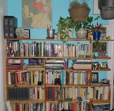 How To Make A Bookshelf In Mc Forget Selfies We Want To See Your Shelfies Books The Guardian