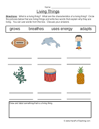 Characteristics Of Living Things Worksheet Middle Living And Non Living Things Worksheets Teaching