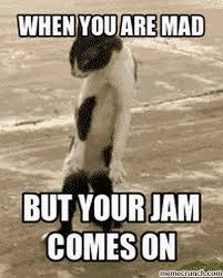 Mad Cat Memes - cat