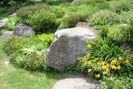 How To Create A Rock Garden Rock Garden Ideas How To Create A Rock Garden