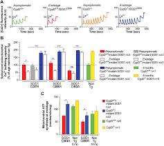 enhancing mitochondrial calcium buffering capacity reduces