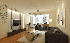 living room ideas grey sofa home design 85 extraordinary small